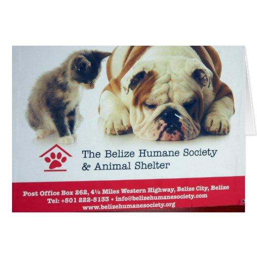 Sociedad humana de Belice Tarjeton