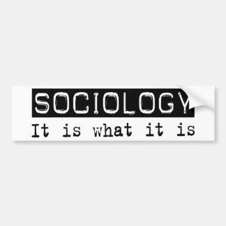 Sociología es pegatina para auto