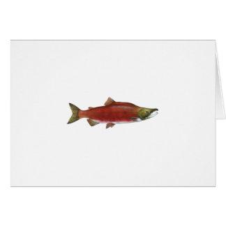 Sockeye Salmon Card