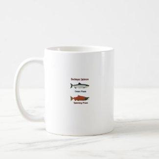 Sockeye Salmon phases mug