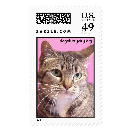 Socks - dognkittycity.org Stamp