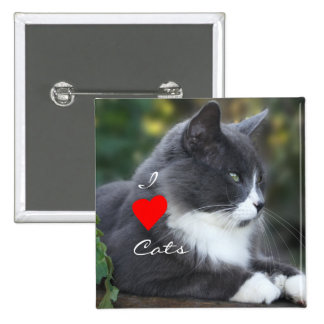 Socks the Cat Pin- customize Pinback Button
