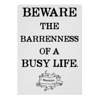 Socrates '...barrenness of a busy life' Quote Poster
