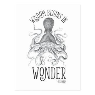 Socratic Cephalopod Postcard
