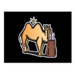 soda de consumición del camello divertido