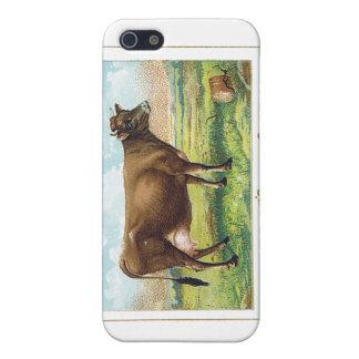 Soda de la marca de la vaca de Dwight iPhone 5 Carcasas