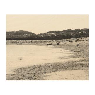 Soda Lake Carrizo Plain California Wood Print