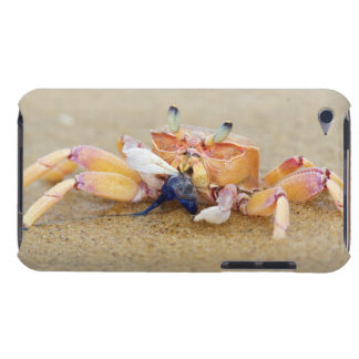 Sodwana Bay, KwaZulu Natal Province, South iPod Case-Mate Case