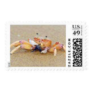 Sodwana Bay, KwaZulu Natal Province, South Stamp
