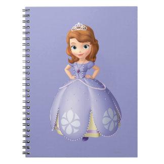 Sofía los primeros 2 note book