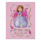 Sofia: Princess from Within Poster