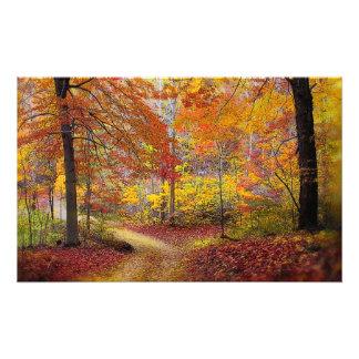 Soft autumn rain, Nature photography, Fall Photo Print