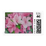 Soft Azaleas Postage Stamps