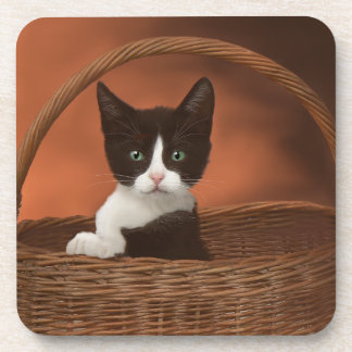 Soft Black & White Kitten in a Basket Coaster
