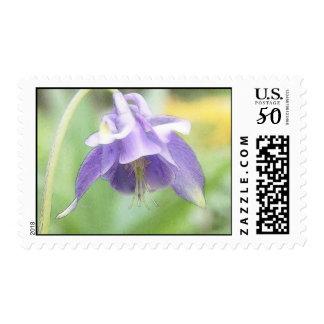 Soft Blue Petals - Aquilegia Postage