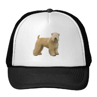 Soft Coated Wheaten Terrier (A)  - stand Trucker Hat