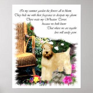 Soft Coated Wheaten Terrier Art Gifts Print