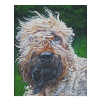 Soft Coated Wheaten Terrier Art print