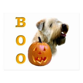 Soft Coated Wheaten Terrier Boo Postcard