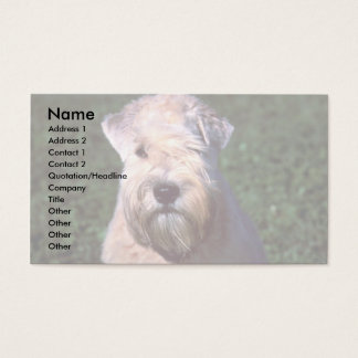 Soft-coated Wheaten Terrier Business Card