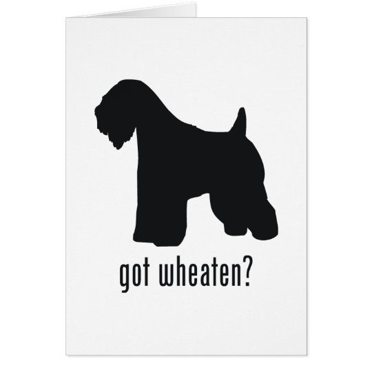 Soft-Coated Wheaten Terrier Card