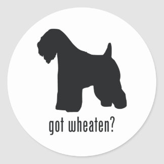 Soft-Coated Wheaten Terrier Classic Round Sticker