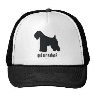 Soft-Coated Wheaten Terrier Hat