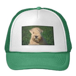 Soft Coated Wheaten Terrier Mesh Hats