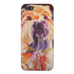 Soft Coated Wheaten Terrier iPhone 5 Cases