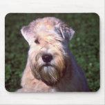 Soft-coated Wheaten Terrier Mousepad