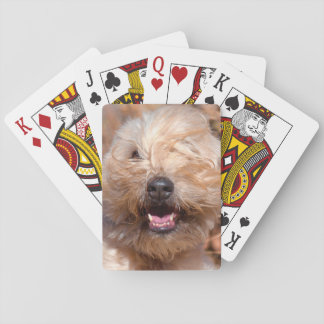 Soft Coated Wheaten Terrier portrait Playing Cards