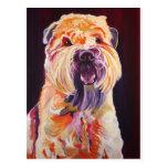 Soft Coated Wheaten Terrier Postcard