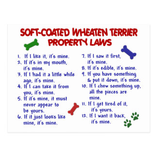 SOFT-COATED WHEATEN TERRIER Property Laws 2 Postcard
