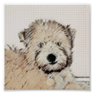 Soft-Coated Wheaten Terrier Puppy Painting Dog Art Poster