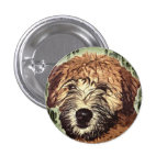 Soft-Coated Wheaten Terrier Puppy with Wet Face 1 Inch Round Button