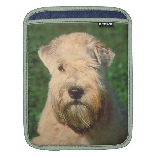 Soft Coated Wheaten Terrier Rickshaw Sleeve iPad Sleeves