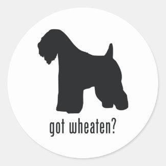 Soft-Coated Wheaten Terrier Classic Round Sticker
