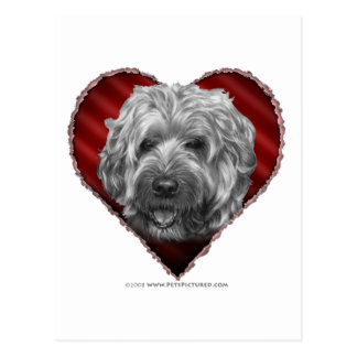 Soft-Coated Wheaten Terrier with Heart Postcard