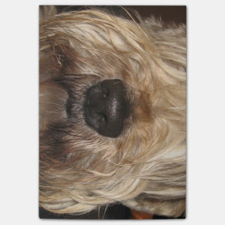soft coated wheaton terrier.png post-it notes