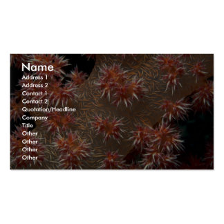 Soft coral polyps feeding in a strong current Double-Sided standard business cards (Pack of 100)