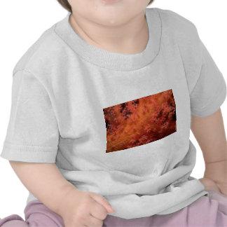 Soft coral tshirts