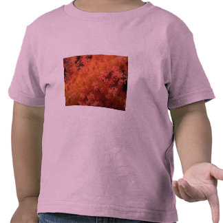 Soft coral shirts
