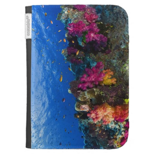 Soft corals on shallow reef, Fiji Cases For The Kindle