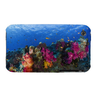 Soft corals on shallow reef, Fiji iPhone 3 Case-Mate Cases
