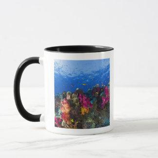 Soft corals on shallow reef, Fiji Mug