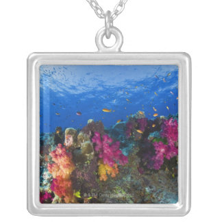 Soft corals on shallow reef, Fiji Pendant