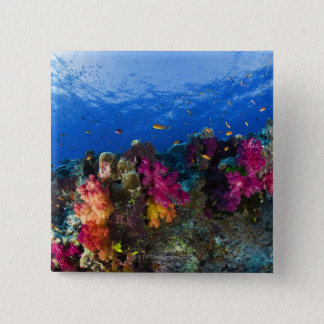 Soft corals on shallow reef, Fiji Pinback Button