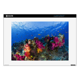 Soft corals on shallow reef, Fiji Skin For Laptop