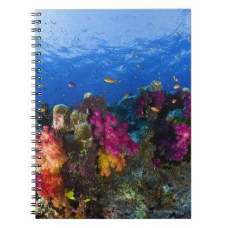 Soft corals on shallow reef, Fiji Spiral Notebook