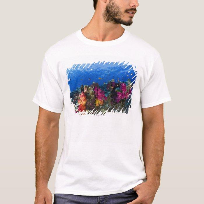 Soft corals on shallow reef, Fiji T-Shirt